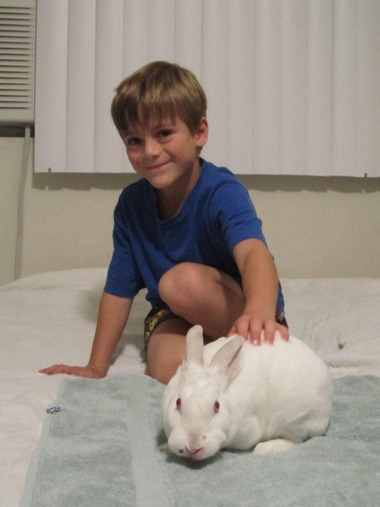 Jersey Jim's Magic Show Rabbit